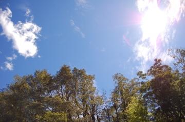 ballet class-blue sky